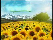 VieVerdi - puntata 14 parte 1- 29/01/2012