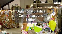 Organico e plastica, come rinascono i rifiuti