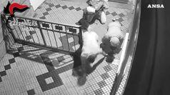 Rapine in case di lusso, preso killer di un'anziana