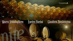 Cantina: Tenuta sant'Antonio - Don Mazzi
