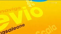 I 98 Comuni di Verona : Minerbe