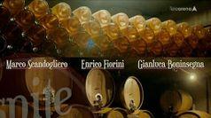 Cantina: Valdadige - Sandro Veronesi