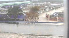 Foggia, Dia:
