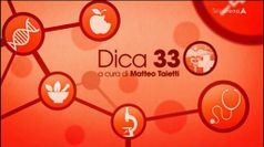 DICA 33 ESTATE, puntata del 31/08/2020