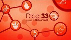 DICA 33 ESTATE del 09/08/2021